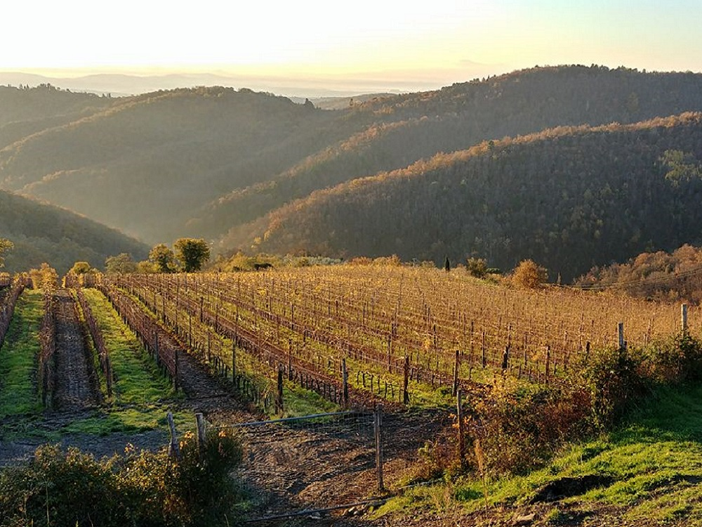 what to do in September: Tuscany from Fietri to...